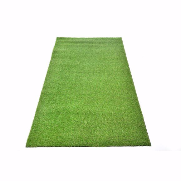 Picture of Awon Realistic Plastic Turf green 2x4m